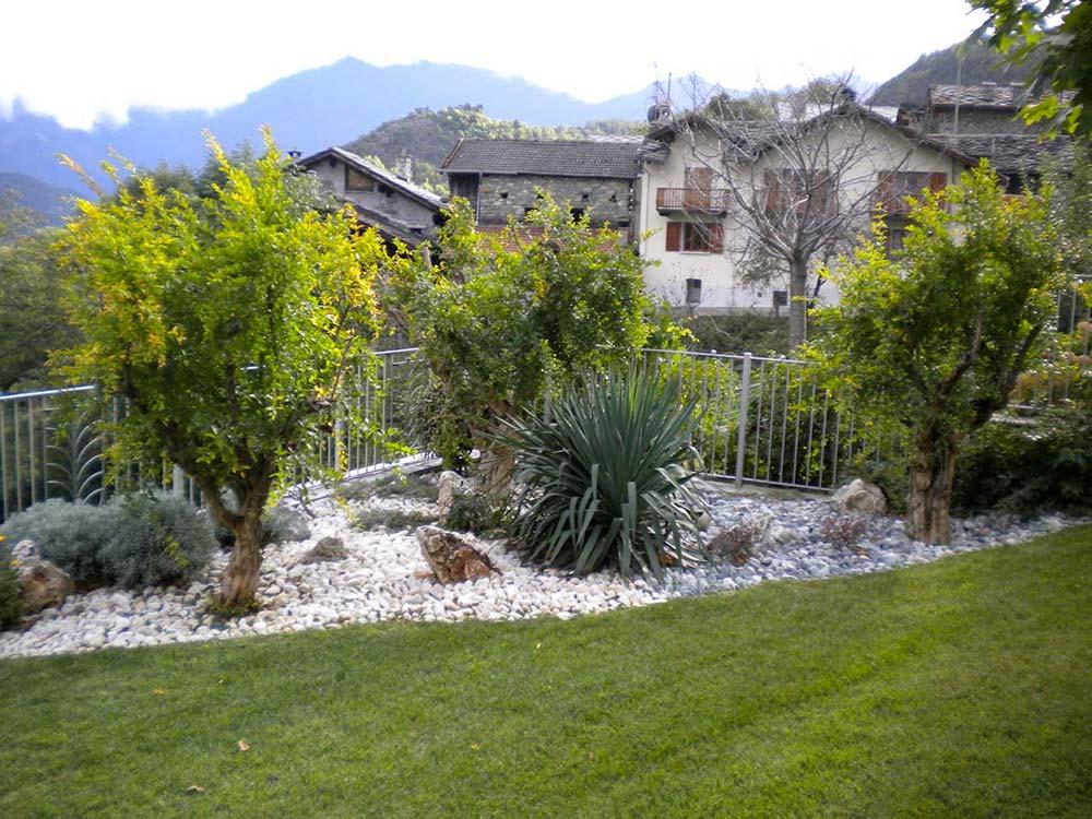 essenze vegetali tappeto erboso vivaio valle aosta