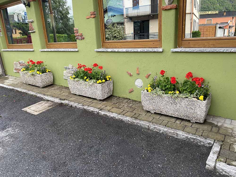 fioriture stagionali arte verde vivaio
