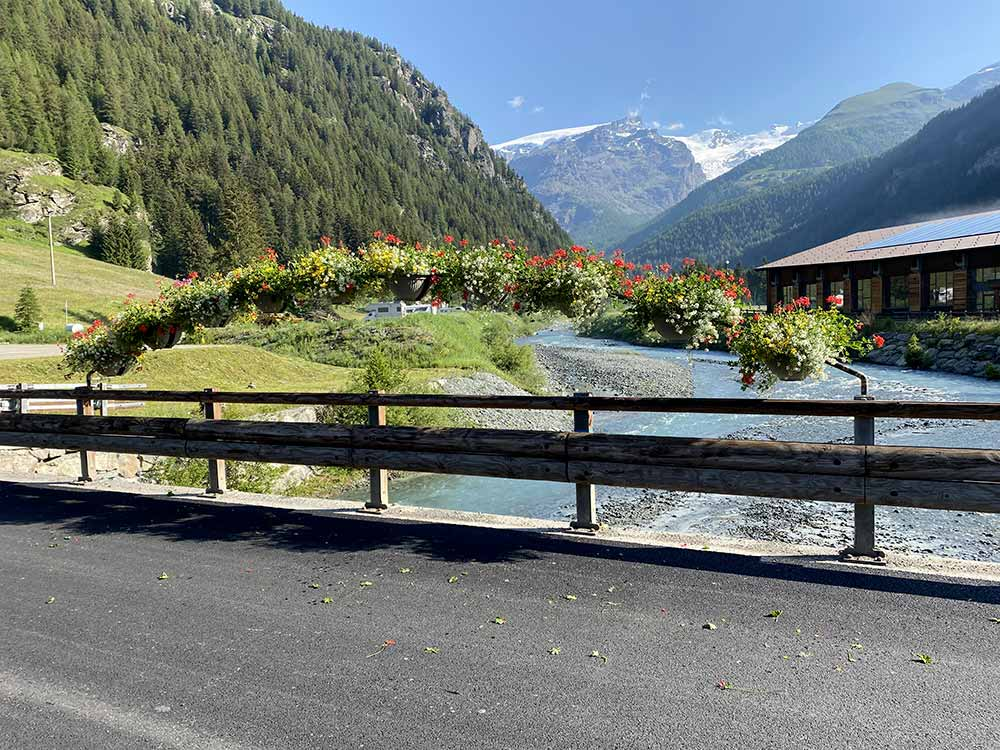 fioriture stagionali valle aosta torino
