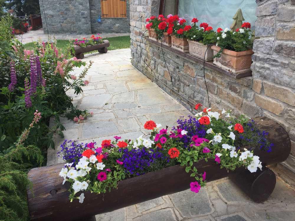 fioriture stagionali02