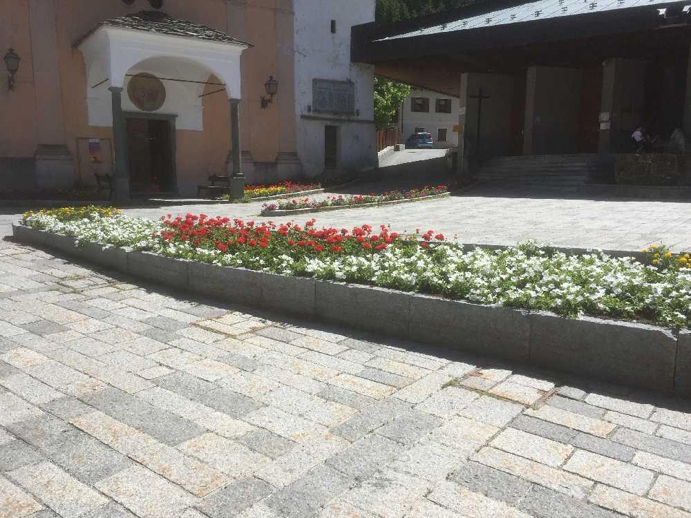 fioriture stagionali07