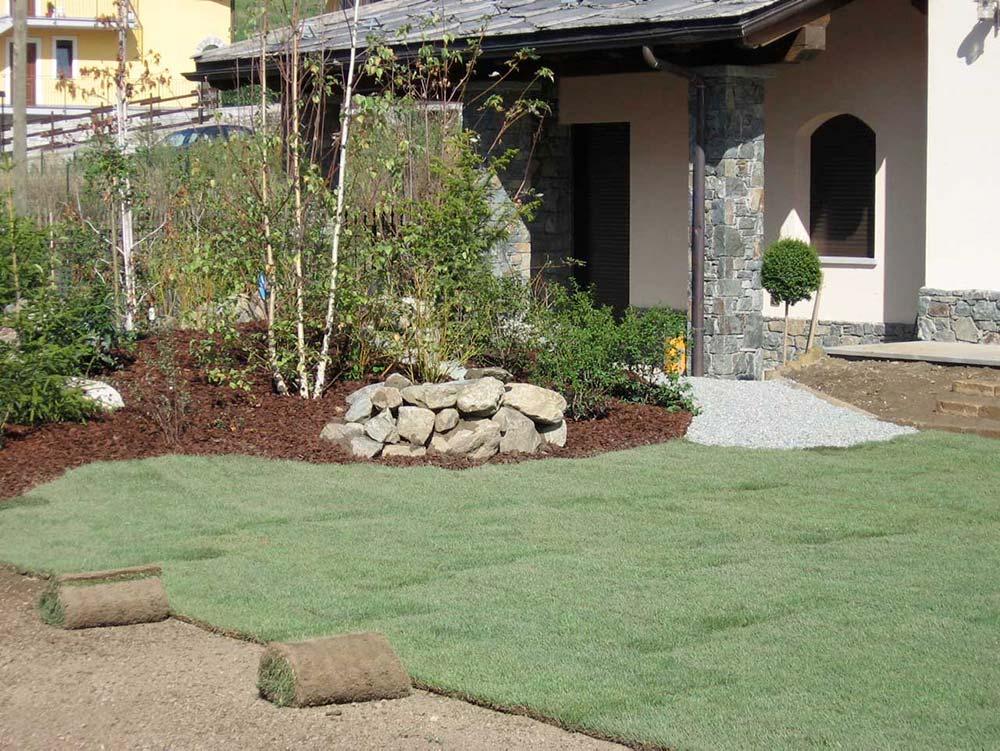 tappeto erboso essenze vegetali aosta