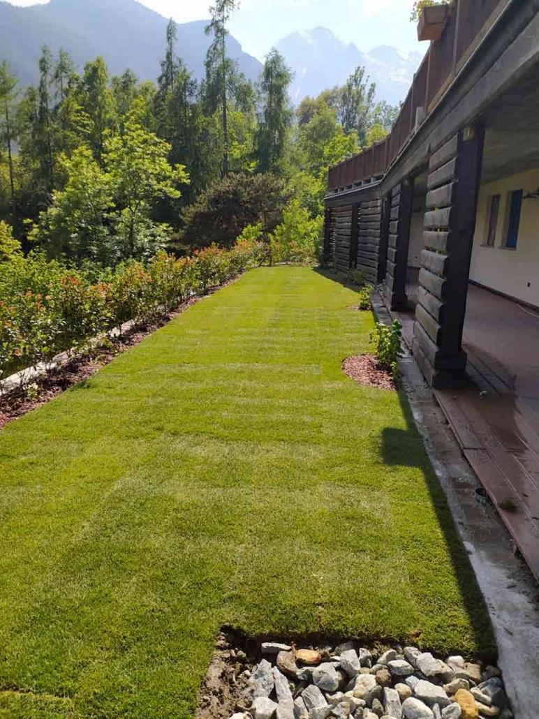 tappeto erboso vivaio valle aosta torino